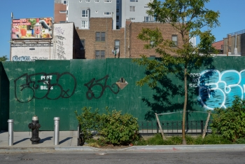13_Brooklyn_MF_7993